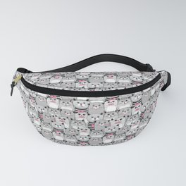 025 Fanny Pack