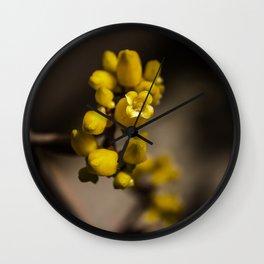 Orgialis Wall Clock