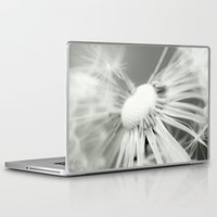 dandelion Laptop & iPad Skins featuring dandelion by Falko Follert Art-FF77