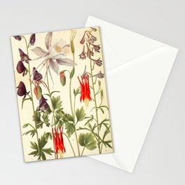 """Wildflowers from """"Rocky Mountain Flowers"""" (1914) by Edith Clements (benefitting The Nature Conservancy) Stationery Cards"""