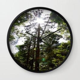 Hoop pine Wall Clock
