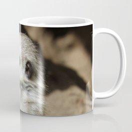 Meerkat20160606 Coffee Mug