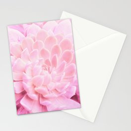 Fat Susie Stationery Cards