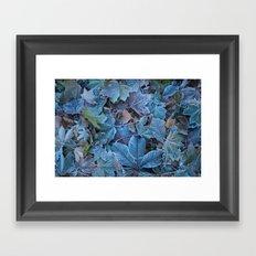 Frosted leaves Framed Art Print