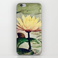 sisters iPhone & iPod Skins featuring Sisters by Scott Mitchell Photography