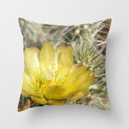 Silver Cholla Cactus Flower Throw Pillow