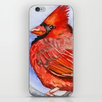 cardinal iPhone & iPod Skins featuring Cardinal by Priscilla George