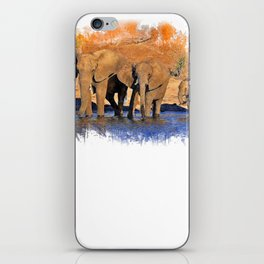 3 Elephants Gift Painiting iPhone Skin