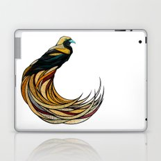 Create Laptop & iPad Skin