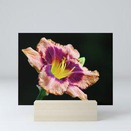 Dark Lily Mini Art Print