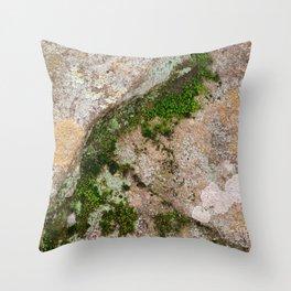 Yin Yang Moss Stone Throw Pillow