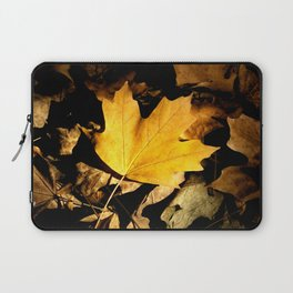 Morning Light Laptop Sleeve
