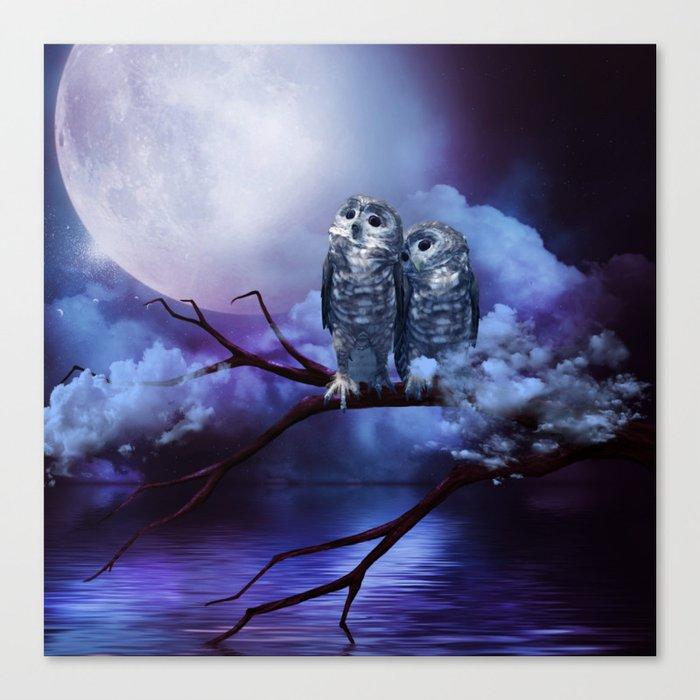 Cute couple owls Canvas Print