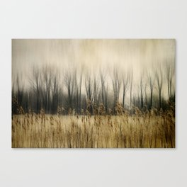 Marsh Edge Canvas Print