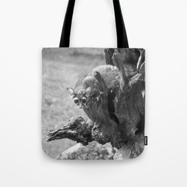 Ringtail #3 Tote Bag