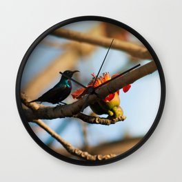 SunBird on a Bombax Ceiba, also known as red silk cotton or red cotton tree. Wall Clock
