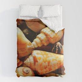She Sells Sea Shells on the Sea Shore Comforters