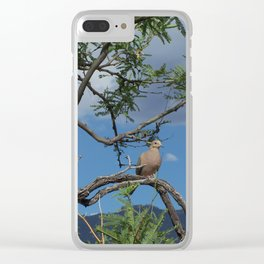 Dove Baby Clear iPhone Case