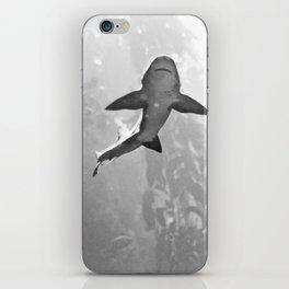 Shark Bait  iPhone Skin
