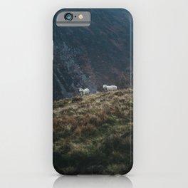 Sheep Walk iPhone Case
