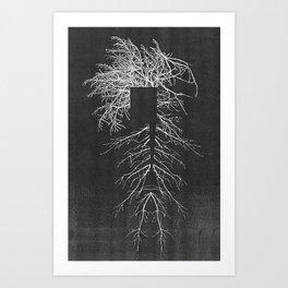 Population Normal Art Print