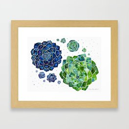 Colour splash succulents Framed Art Print