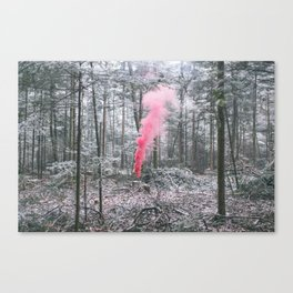 red winter Canvas Print