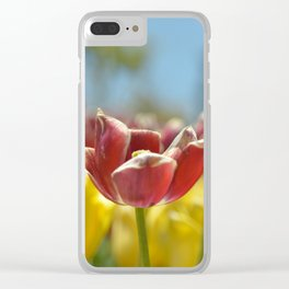 Red and yellow tulips Clear iPhone Case