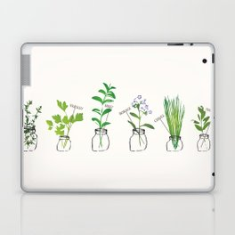 Mason Jar Herbs Laptop & iPad Skin
