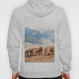 Peruvian Wool Hoody