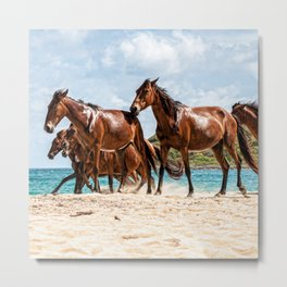 horses on beach Metal Print