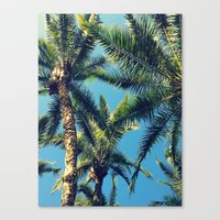 palm tree Canvas Prints featuring Palm Tree by Jillian Stanton