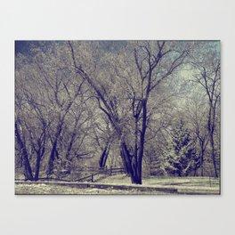 AD Park Canvas Print