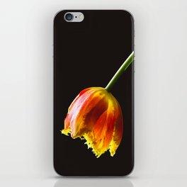 Elixir iPhone Skin