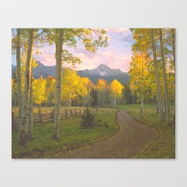 Aspen on a Country Road in the San Juan Mountains of Colorado Canvas Print