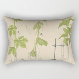 Antique Botany Rectangular Pillow
