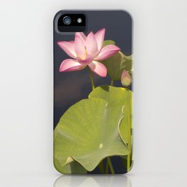 Pink Lotus by Teresa Thompson iPhone Case