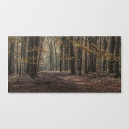 Autumn Fantasy Canvas Print