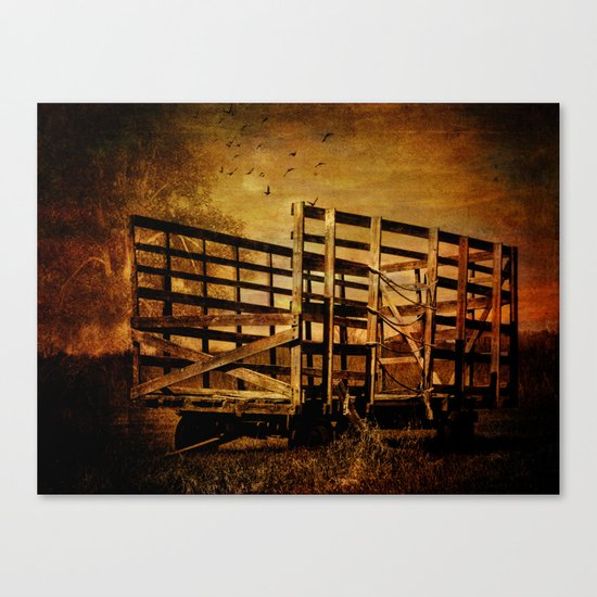 Waiting for the Hay Canvas Print