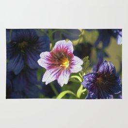 Longwood Gardens - Spring Series 50 Rug
