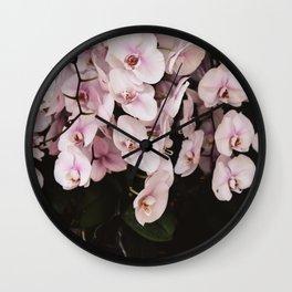 Orchids in Hong Kong Wall Clock