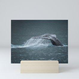 Whale Tail Mini Art Print