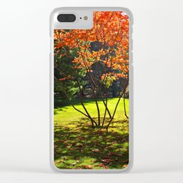 Young Japanese Rowans Clear iPhone Case
