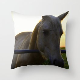 Beautiful Horse at Sunset Throw Pillow