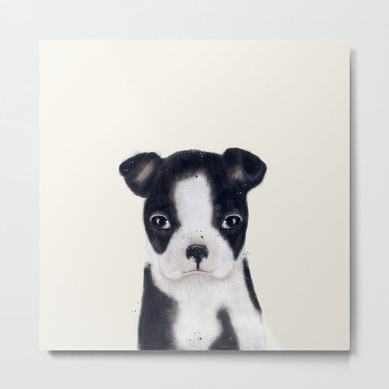 little boston terrier Metal Print