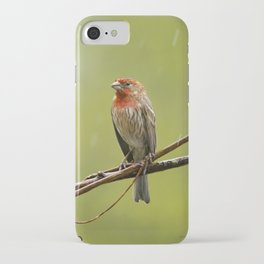 House Finch in the Rain iPhone Case