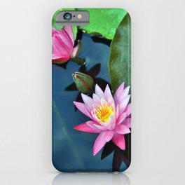 Lotus Blossoms iPhone Case