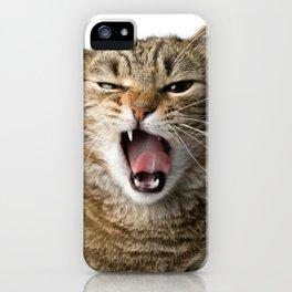 Crazy Cat iPhone Case