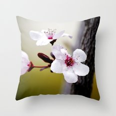 Signs of Spring 3 Throw Pillow