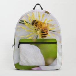 Spreading the pollen. Backpack